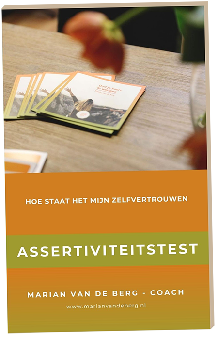 Assertiviteitstest coaching